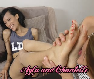 Chantelle Fox Ukt 529