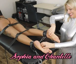 Sophia Lee Chantelle Fox Ukt 874